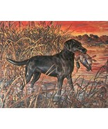 Vtg HUNTING BIRD DOG Calendar Art PRINT by FENE... - $18.50