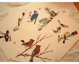 Print_birds_thumb155_crop