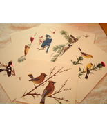Collector's Portfolio of Song Birds Six Prints by Sherm Pehrson - $8.95