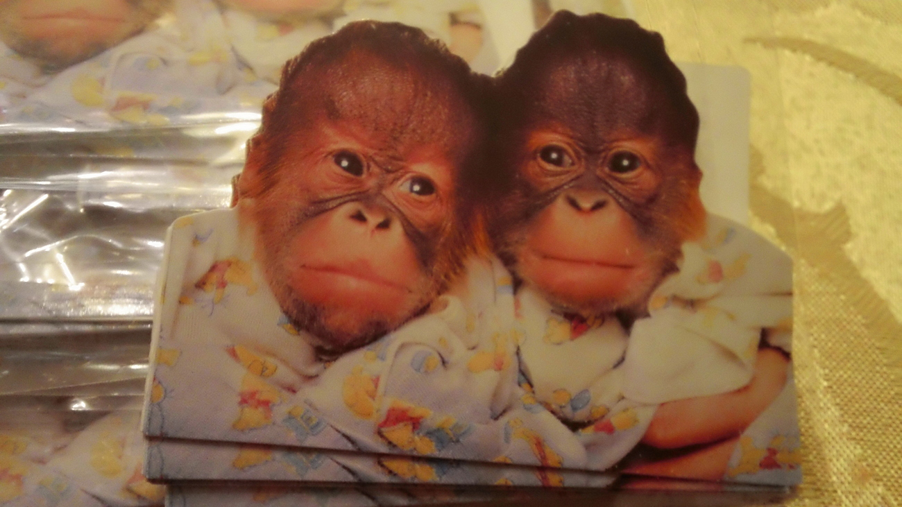 Baby Chimps - GIFT TAG