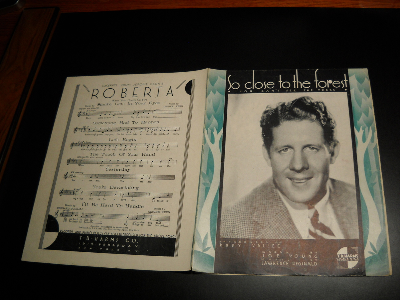 Sheet_music_so_close_to_the_forest_you_can_t_see_the_trees_rudy_vallee_1934_harms_04