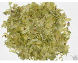 1 ounce - Fresh Herb - Hops - FREE SHIPPING