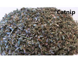 Buy Herbs - 1 ounce - Fresh Herb - CATNIP - FREE SHIPPING