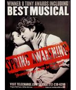 SPRING AWAKENING Theater Poster * Lea Michelle ... - $60.00