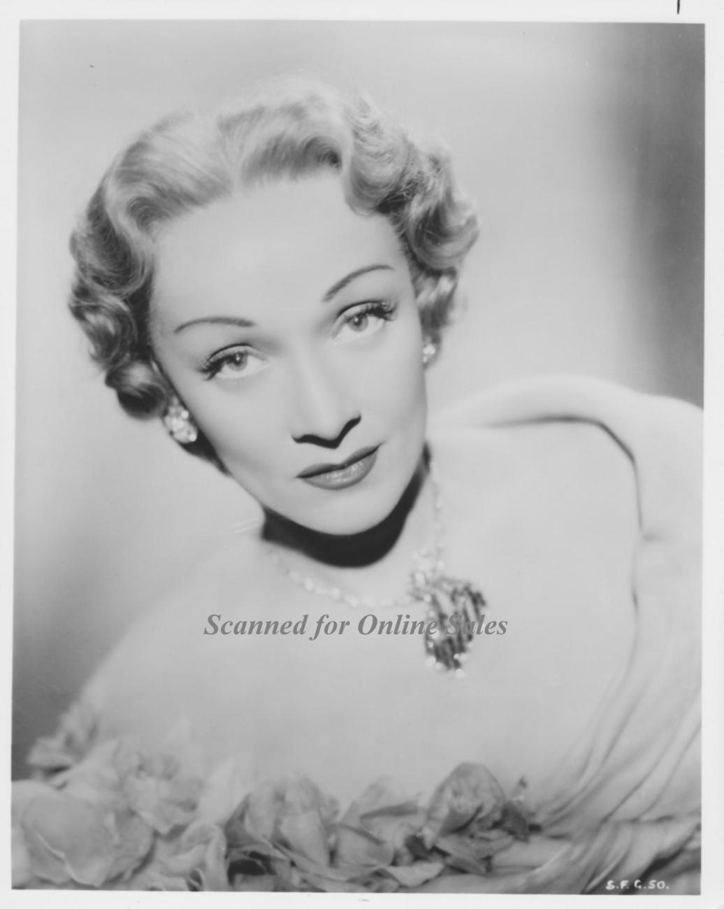 Marlene Dietrich Timeless Vamp Vintage 8x10 Photo 1264020