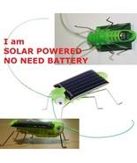 SOLAR POWER LOCUST GRASSHOPPER FUNNY NOVELTY GA... - $2.99