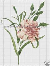 022 Bead Pattern Carnation Dianthus Caryophyllu... - $0.00