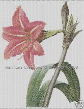 003 Bead Pattern Brazilian Amaryllis Flowers Pe... - $0.00