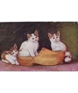 Antique Postcard 3 Cats Wooden Shoe Three Siste... - $12.75