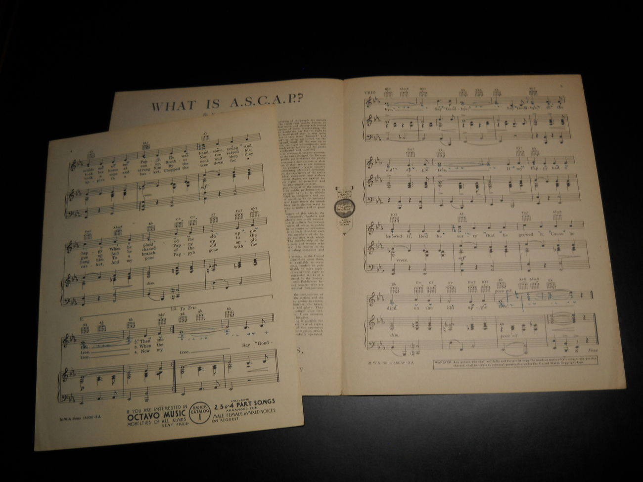Sheet_music_the_old_apple_tree_swing_your_lady_humphrey_bogart_1938_m_witmark_07