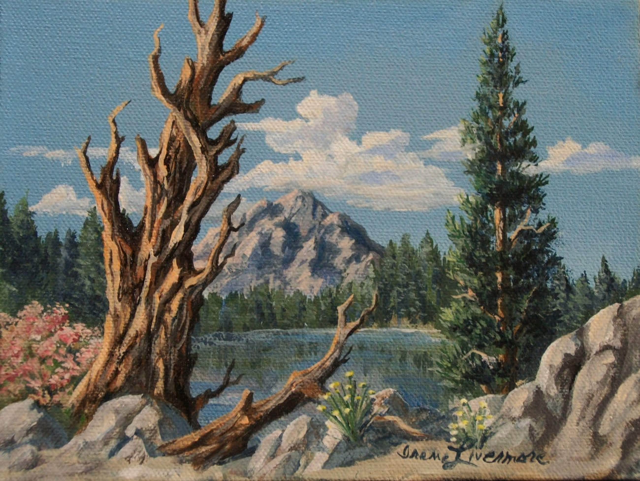 High Sierra Lake Standing Dead Tree Flowers Realistic Original Oil Painting
