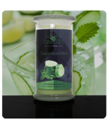 HONEYDEW MELON- JEWELRY IN CANDLES - $32.00