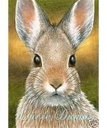 ACEO art print Hare 18 bunny rabbit by Lucie Dumas - $4.99