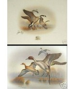 2 A1 Ronald Louque Duck Stamp Prints Honkers & ... - $35.99