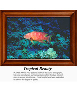 Tropicalbeauty_thumbtall