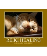 ~~ Reiki ~~ Selenite Enlightenment - $0.00