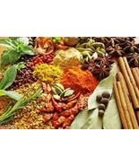 Lenier's Chai Marsala Seasoning Rub 2oz Free Sh... - $5.39