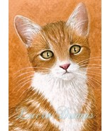 ACEO art print Cat #360 by Lucie Dumas - $4.99