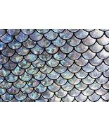 4-Way Stretch Silver Mermaid Hologram Spandex M... - $16.99