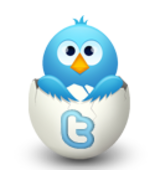 Twitter Promotions- 4 times a day for 1 week $2.99 - $2.99