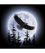 Eagle Moon  Eagle  Sweatshirt  or Longsleeved t... - $19.70 - $27.62