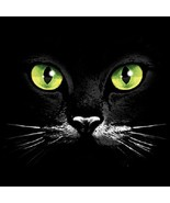 Green Eyed Cat Face  Hoodie   Sizes/Colors - $24.70 - $32.62