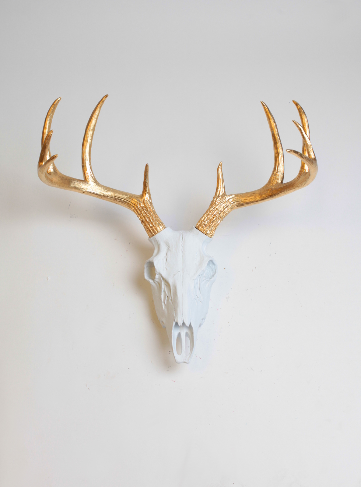 White resin deer skull w gold antlers faux stag decor for Fake deer antlers for crafts