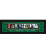 Eastern Michigan Eagles Officially Licensed Fra... - $36.54
