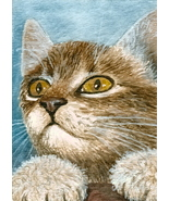 ACEO art print Cat #249 by Lucie Dumas - $4.99
