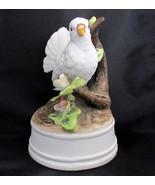 Milano Porcelain Bisque White Dove Music Box Lo... - $14.46