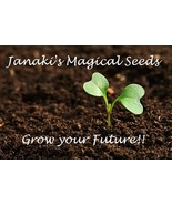Cleanse Hex PROTECTION Seeds~Grow Your Own Magi... - $39.99