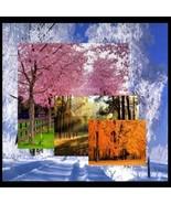 4 Seasons... Digital Art - $10.00