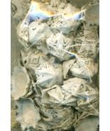 Sea Shell Craft Small Shells Lot 3 - $16.99