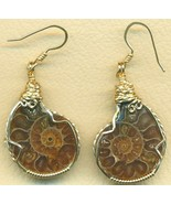 Fossilized Ammonite Gold Wire Wrap Earrings 3 - $42.99