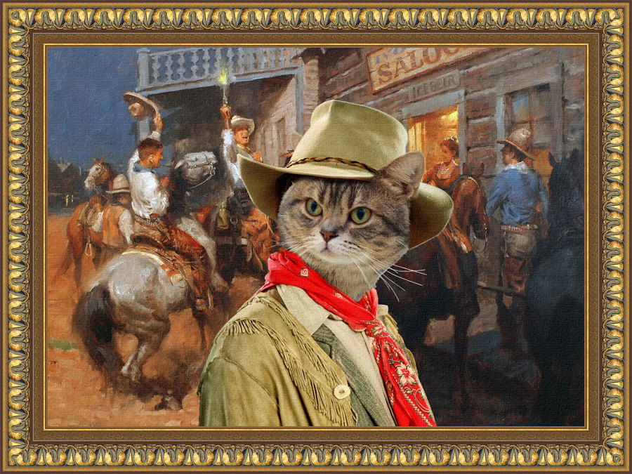 Tabby Cat American Shorthair Fine Art Canvas Print   Hello Boys