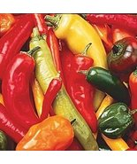 HOT PEPPER SEED MIX - 25 FRESH SEEDS - $1.49