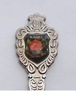 Collector Souvenir Spoon USA Hawaii Kauai The G... - $9.99