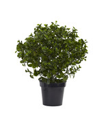 "28"" Green Peperomia Plant UV Resistant (Indoor/... - $149.93"