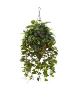 Vining Mixed Greens w/Cone Hanging Basket, Near... - $101.16