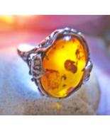 Amber_ring_haunted_thumbtall