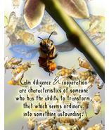 BEE: Unique Blank Insect Philosophy Card - $4.25