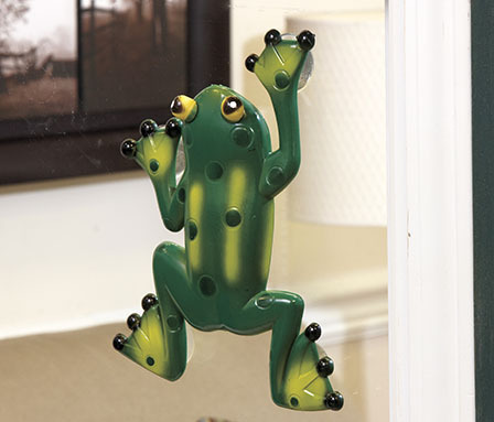Frog Window Thermometer
