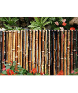 Bamboo Fencing- 24 Feet Long x 3 Feet High x 1