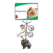 Little Gifts Silver and Gold Plated Pomeranian ... - $10.99