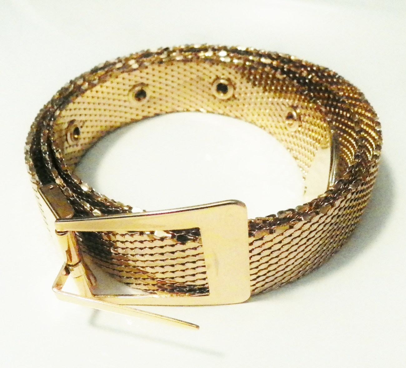 Mesh_belt_1