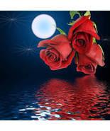 Rose_bouquet1_thumbtall
