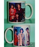 Jonas Brothers 2 Photo Designer Collectible Mug 01 - $14.95