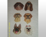 Buy Set of 6 Dog Refridgerator Magnets bn