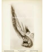 Rare GORGEOUS Swimsuit Esther WILLIAMS Original... - $24.99