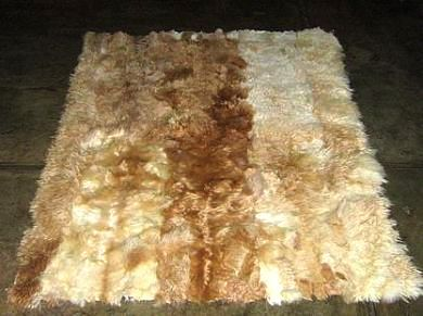 Baby alpaca fur rug, natural beige,brown spots, 200 x 220 cm/ 6'56 x 7'21 ft